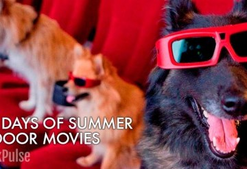 Summer 2017: Dog Days of Summer Outdoor Film Festival
