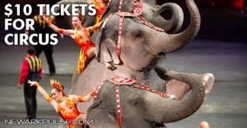 Ringling Brothers Circus is here 2013